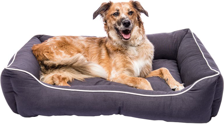 Лежак Dog Gone Smart Lounger Bed DGSLB2639