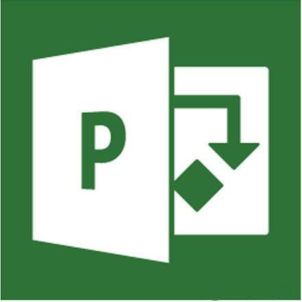 Microsoft Project Professional 2013 32/64 Russian BOX SotMarket.ru 40470.000