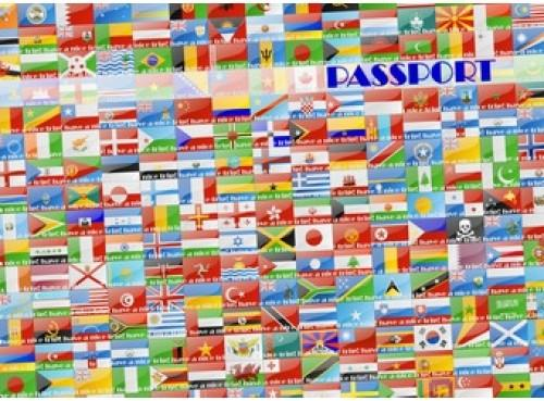 Обложка для паспорта Эврика N105 SotMarket.ru 80.000