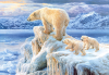 фото Castorland Арктика C-102525