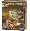 фото 4M Палеонтологический музей 00-03356