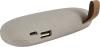 фото Универсальное зарядное устройство AccesStyle Stone-1