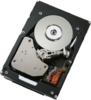 фото IBM 00W1156 300GB