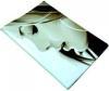 фото Обложка для паспорта Эврика N 142 девушка