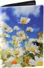 фото Обложка для паспорта Эврика N 145 ромашки