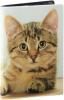 фото Обложка для паспорта Эврика N 146 котенок