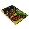фото Обложка для паспорта Эврика N157 Бабочки