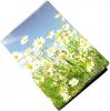 фото Обложка для паспорта Эврика N167 Ромашки