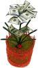 фото Настольный сувенир Эврика Денежное дерево 100$