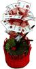 фото Настольный сувенир Эврика Денежное дерево 500 рублей