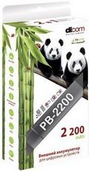 фото Аккумулятор для Sony PSP 3000 внешний Dicom Panda PB-2200
