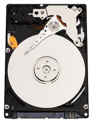 фото Жесткий диск WD WD5000BEVT 500GB