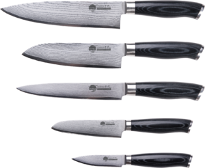 Фото набора ножей SUPRA CHIYO SK-DC6Kit