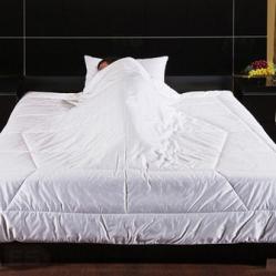 Одеяло Primavelle Fengshui 12fs31106-29 SotMarket.ru 4030.000