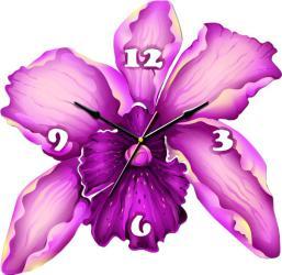 ТИАРЕЛЛА Орхидея СН33 SotMarket.ru 2150.000
