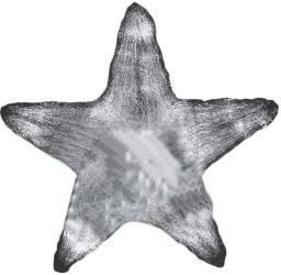 NEON-NIGHT Звезда 513-435 SotMarket.ru 1890.000