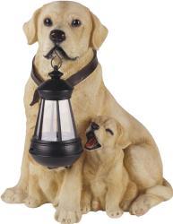 Фото светильник ЭРА SL-RSN31-DOG
