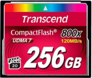 Фото флеш-карты Transcend CF 256GB 800x TS256GCF800