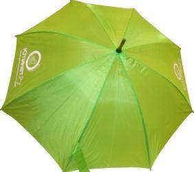 фото Зонт зеленый