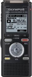 Olympus WS-833 8GB