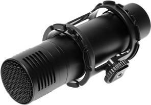 Flama FL-VM300PS SotMarket.ru 3600.000
