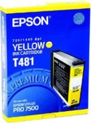 фото Epson C13T481011