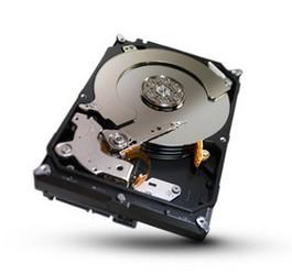 фото Жесткий диск Seagate ST32000645NS 2TB