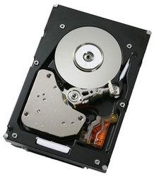 фото Жесткий диск IBM 41Y8236 1000GB