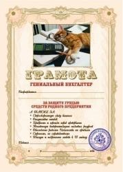 Грамота Эврика Гениальный Бухгалтер SotMarket.ru 120.000