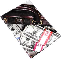 Фото чехла для паспорта Эврика N165 Кейс с деньгами