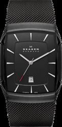 фото Наручные часы Skagen Titanium SKW6011