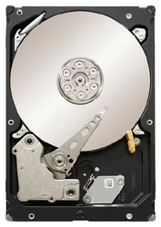 Seagate ST33000650SS 3000GB