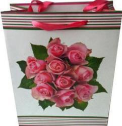 фото Подарочный пакет Феникс 28624
