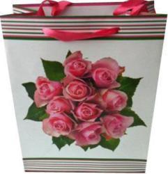 фото Подарочный пакет Феникс 28675