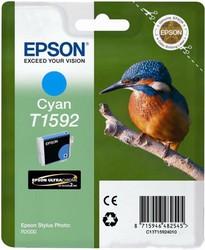 фото Epson C13T15924010