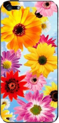 фото Наклейка для Apple iPhone 5 LuxCase Цветы герберы