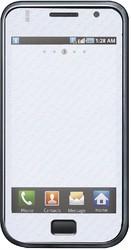 Фото виниловой наклейки на Samsung i9000 Galaxy S Vinil-Koritsa Черный лев